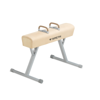 Junior Pommel Horse